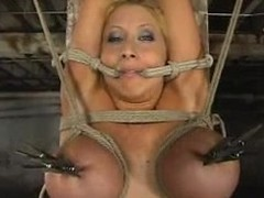 Big tittied Candy Manson gets oiled adjacent to with an increment of tortured